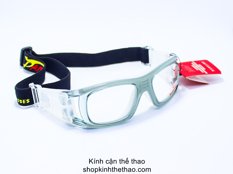 kinh-the-thao-can-panlees